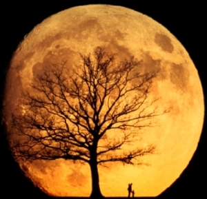 Bulan memang besar tuuh